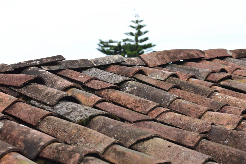 Lekkage Dak | Lekkage plat dak opsporen | MijnKluswijzer.nl